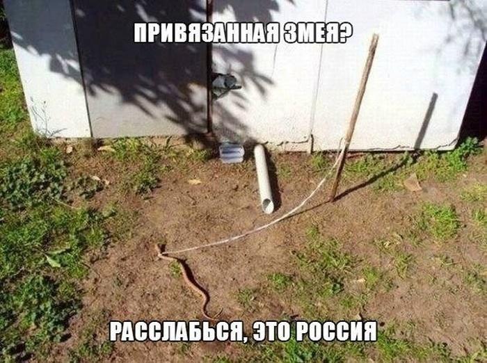 1381686306_z-79.jpg