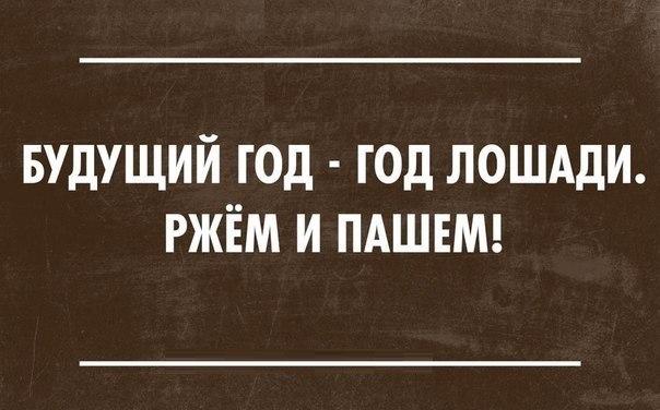 -9XUx-vbYZQ.jpg
