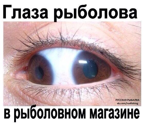 K10yKMu0dYw.jpg