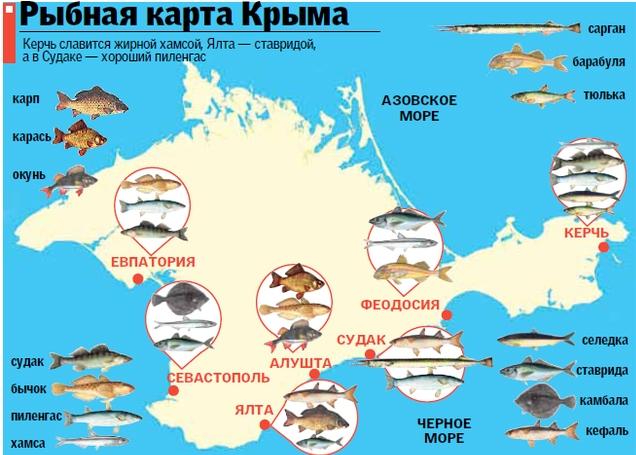 можно ли ловить рыбу в крыму