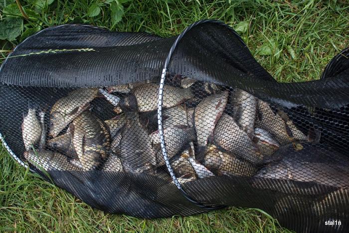 20130626_Fishing_Mizoch_035[1].jpg