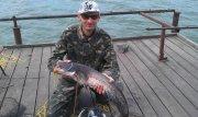 рыбалка на суле база солнечная