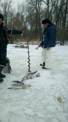 рыбалка платники украина