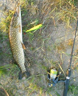 прогноз для рыбалки в павлограде