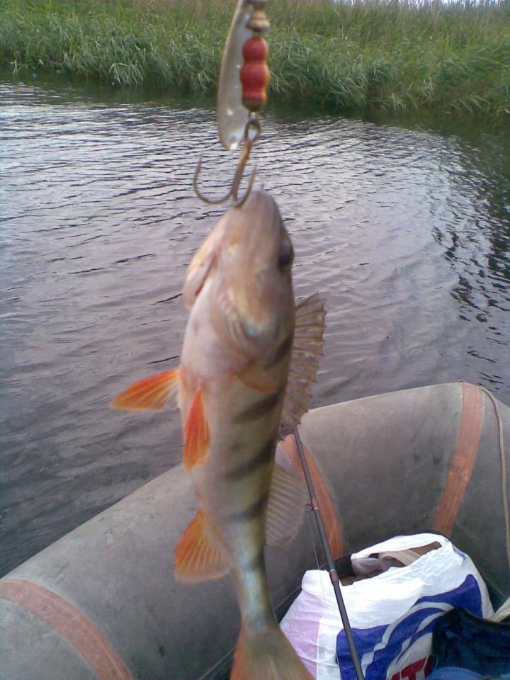 рыболовный форум павлограда