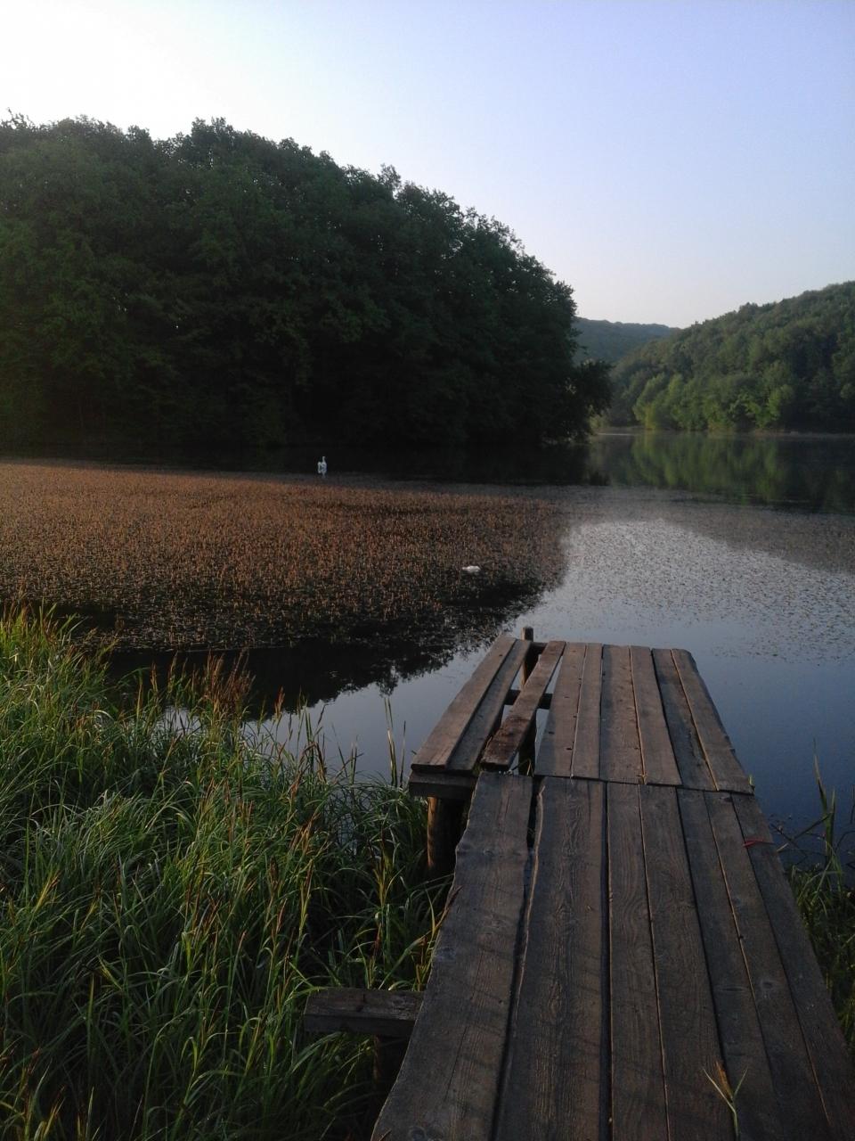 Прогноз рыбалки в черновицкой области